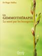 La GEMMOTHERAPIE : santé par les bourgeons